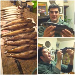 Caughting Fish